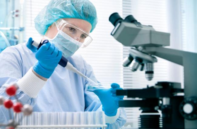 Saiba mais sobre a importância dos exames de sangue e de urina