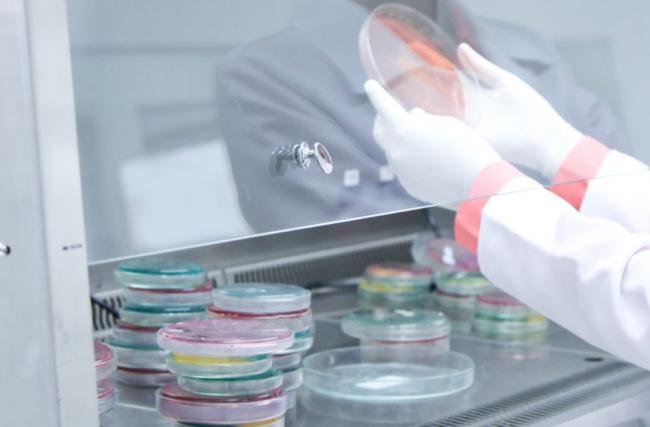 Por que fazer exames de fezes e urina? Confira em nosso blog!